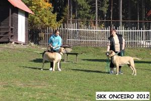 Foto - 5-12 - irmas Bella ze Skalního kraje e Brigida ze Skalního kraje 9