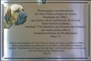 Placa S. Castro