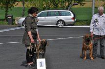 Foto nº 6 - Expo  Gollhofen - 12-04-14