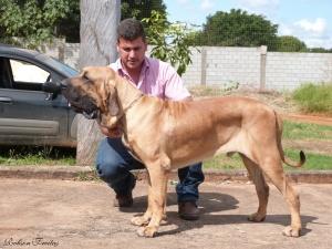 17 - Guian Fila Roots
