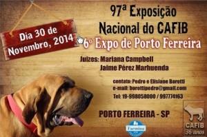 Cartaz P. Ferreira-14