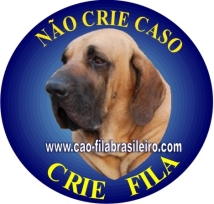 Adesivo Nao crie Caso, crie Fila - 1