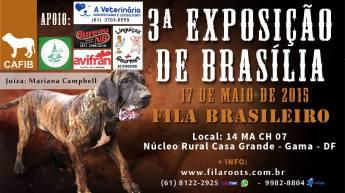 Cartaz expo Brasilia