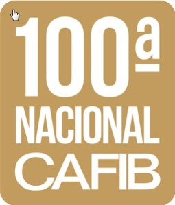 Logo 100ª