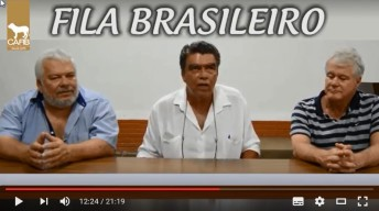 Participação Amercio + Chico