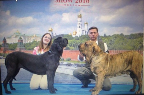 Casal expo Russia - Jun-16