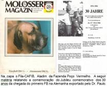 22-modern-e-molosser