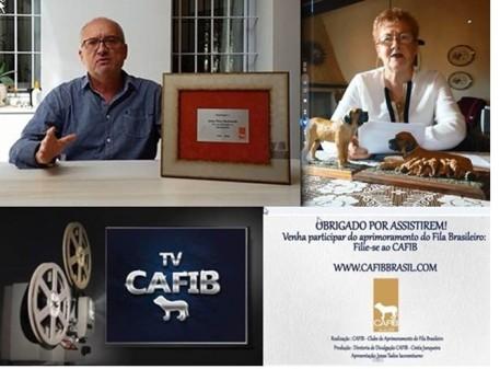 100 - TV CAFIB - 2