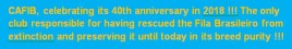 2 - CAFIB 40 years
