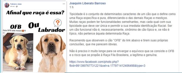 1 - Fabiano