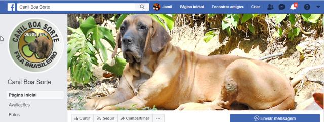 Quinzinho + Boa Sorte