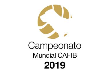 3 - Campeonato