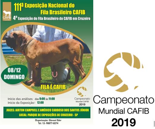 Carta Cruzeiro - 2019
