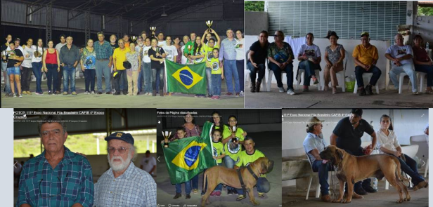 34 - Familia Cafib Cruzeiro - 1