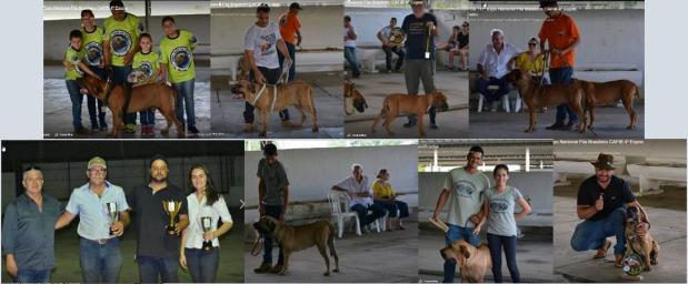 36 - Familia Cafib Cruzeiro - 3